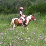 foto scuola equitazione maremma toscana