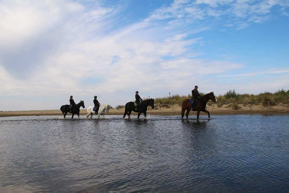 Passeggiate a cavallo sul mare in maremma