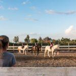 foto scuola di equitazione a grosseto