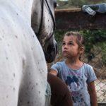 foto lezioni di equitazione di base a grosseto