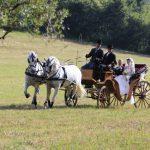 foto carrozza per matrimoni, sposi. cavallonatura, grosseto, toscana
