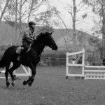 foto scuola equitazione, cavallonatura, grosseto, maremma, toscana