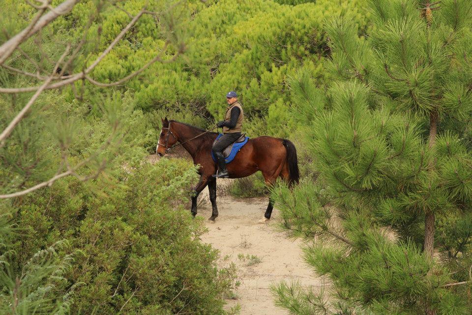 immagini trekking a cavallo. cavallonatura, grosseto, maremma, toscana