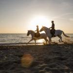 immagini passeggiata a cavallo sul mare toscana