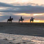 immagini escursioni sul mare a cavallo. cavallonatura, grosseto, toscana, maremma