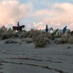 immagine trekking a cavallo sulla spiaggia grosseto
