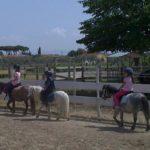 foto scuola pony a grosseto