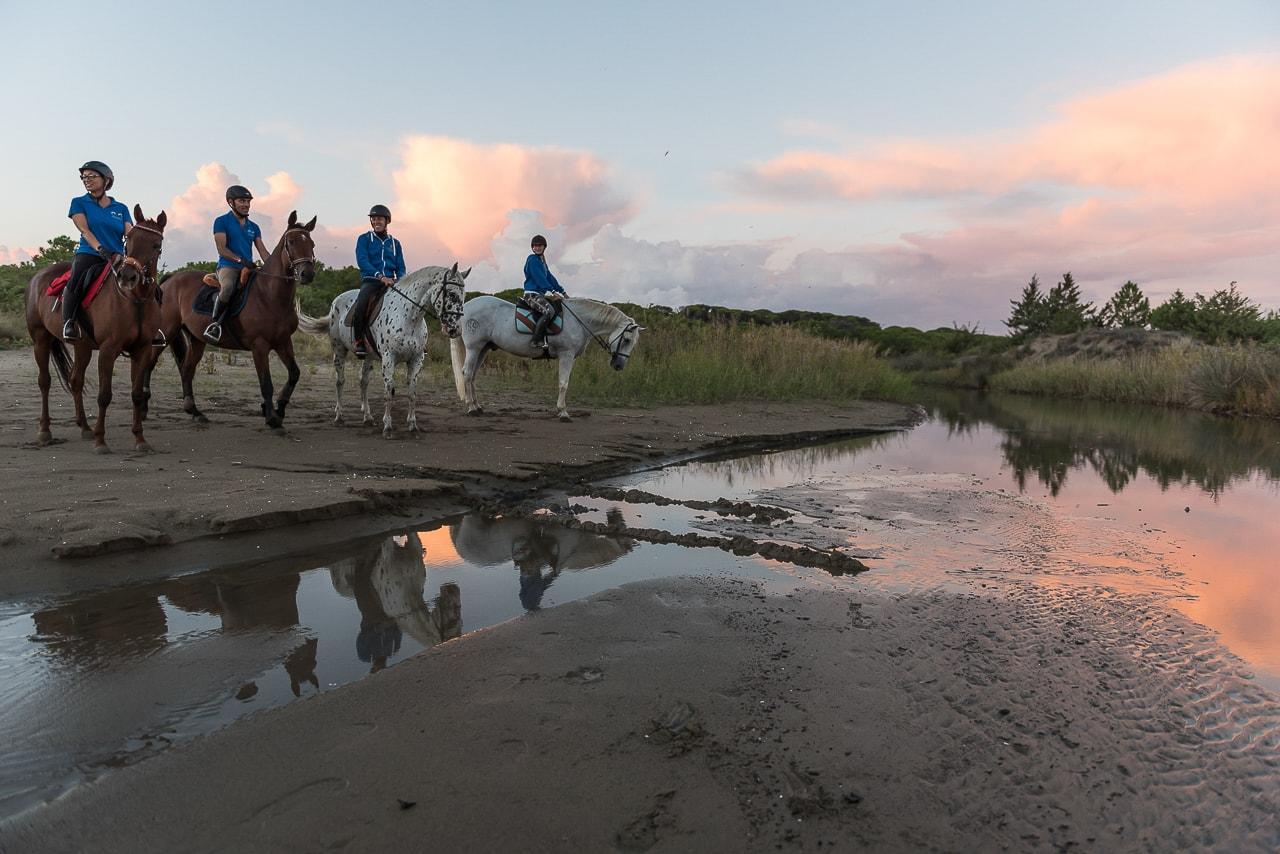 immagini passeggiate a cavallo sulla spiaggia a grosseto