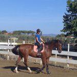 foto scuola di equitazione cavallonatura, grosseto, toscana