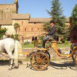foto cerimonia in carrozza. cavallonatura, grosseto, toscana, maremma