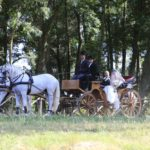 foto matrimonio in carrozza a grosseto con sposa e sposo