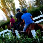 foto scuola equitazione cavallonatura