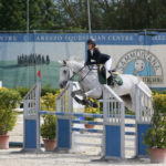 foto equitazione salto cavallonatura