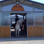foto struttura pensione per cavalli – cavallonatura Toscana
