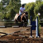 foto salto ostacoli cavallonatura, grosseto
