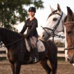 Campi Estivi cavallo 03