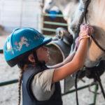 Campi Estivi cavallo 06